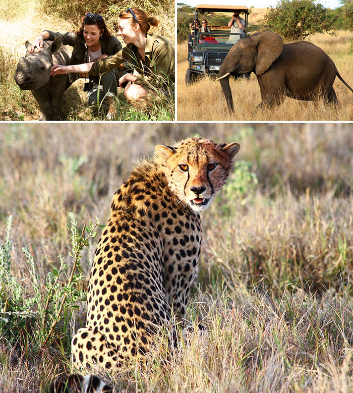 Wild at Heart Journeys Conservation Lewa Conservancy Kenya Big Five Charlie Jackson