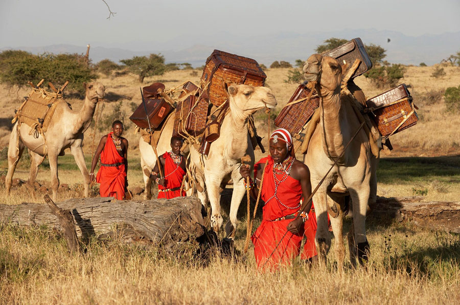 Wild at Heart Journeys Lewa Wilderness Walking Wild Fly Camping Maasai Camel